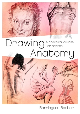 Buy Drawing anatomy Written By Barrington barber at Best Price on  Markmybook com