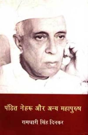 Pandit Nehru Aur Anya Mahapurush